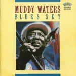 Muddy Waters - Blues Sky (1992)