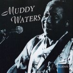 Muddy Waters - Mannish Boy (1995)