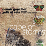 Dennis Gonzalez Yells at Eels - Cape of Storms (2010)